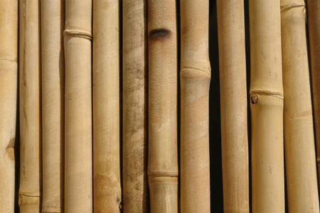 us floors bamboo transitions for essays