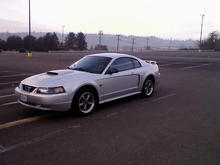 cell phone pic of mustang