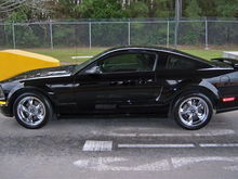 2005 Mustang GT (Born 21 September 2004)