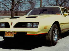 "1978 Firebird Formula.   I sold my 73 Mach 1 and bought this car in December of 1977.   It didn't have the performance of the Mach 1, but it was a lot easier to see ""out"" of than the Mach 1.   My two mistakes were getting white vinyl seats (what was I thinking) and the 350 engine instead of the 400 (big mistake)."