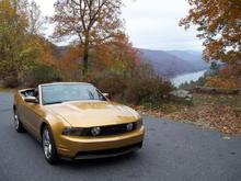 My 2010 GT Sunset Gold Vert