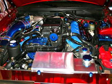 New pics. Cleaned up engine bay