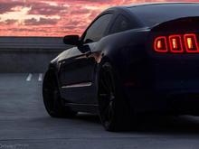 Garage - 5.0 Mustang
