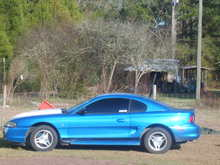 My Old Mustang