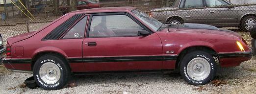 Davids Mustang 3