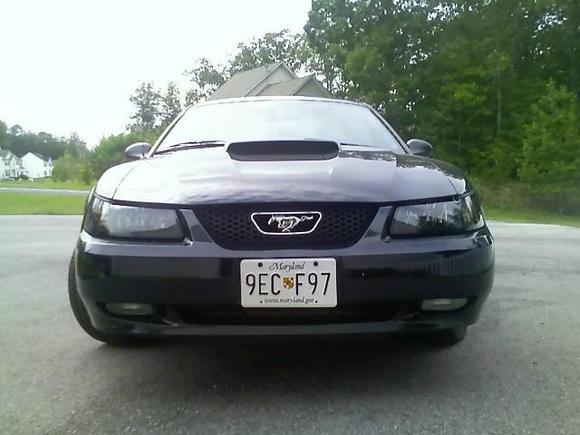 smoked headlights