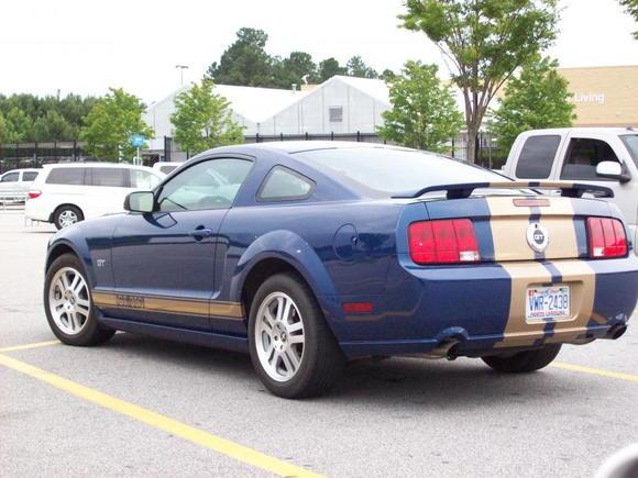 Mustang 011