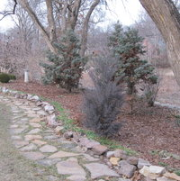 In winter, the border garden is serene, waiting for spring