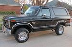 1983 Bronco - Perfect!