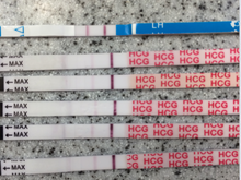 Top blue test is an opk. These are all from today.
