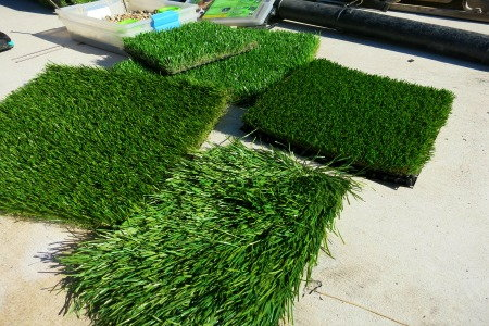 The 411 on fake lawns doityourself putting in a fake lawn artificial turf waterless turf pet turf vic solutioingenieria Image collections