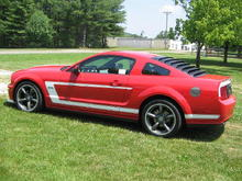 2008 Dan Gurney Saleen in my front yard before taking it to the Pilot Mtn. Cruise In.