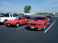 Mustang 004