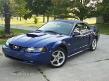 100% stock stang