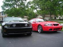 Mustangs!
