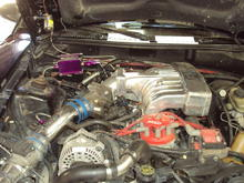 JUNK Intake! It currently has a Trickflow track heat.