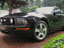 "2007 GT stick shift - she was new, w/o even the front license plate & with the stock 18"" fan blade wheels."