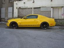 Mustang Saleen Wheels