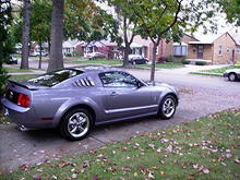 MustangRearside2