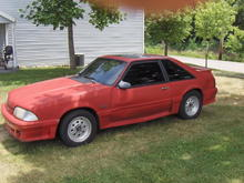The Stang 004