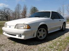 Virgin Mustang