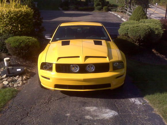 Shelby hood, halo light and fog lights