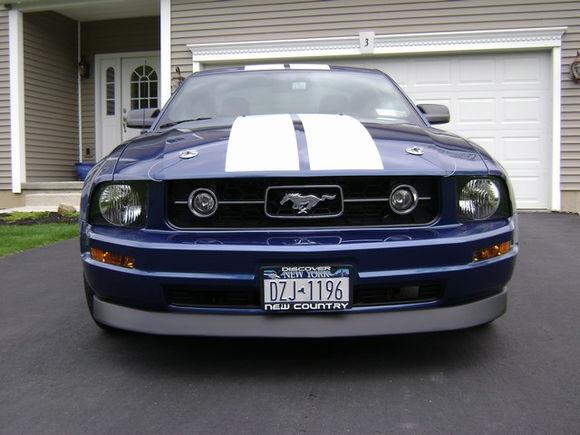 Mustang 2010 003