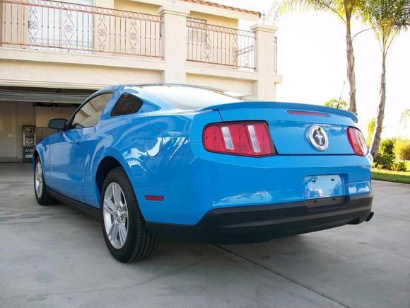Mustang 0191