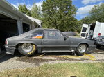 Mustang roller