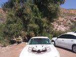 1976 Pontiac Firebird  for sale $31,000