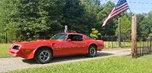 1978 Pontiac Firebird  for sale $22,500