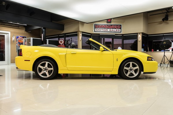 2003 Ford Mustang SVT Cobra Convertible  for Sale $42,900