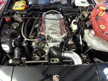 Complete f.a.s.t fuel system. Regulator,billet rails, 36lbs injectors,lsxr 102 mm intake and nick williams tb,