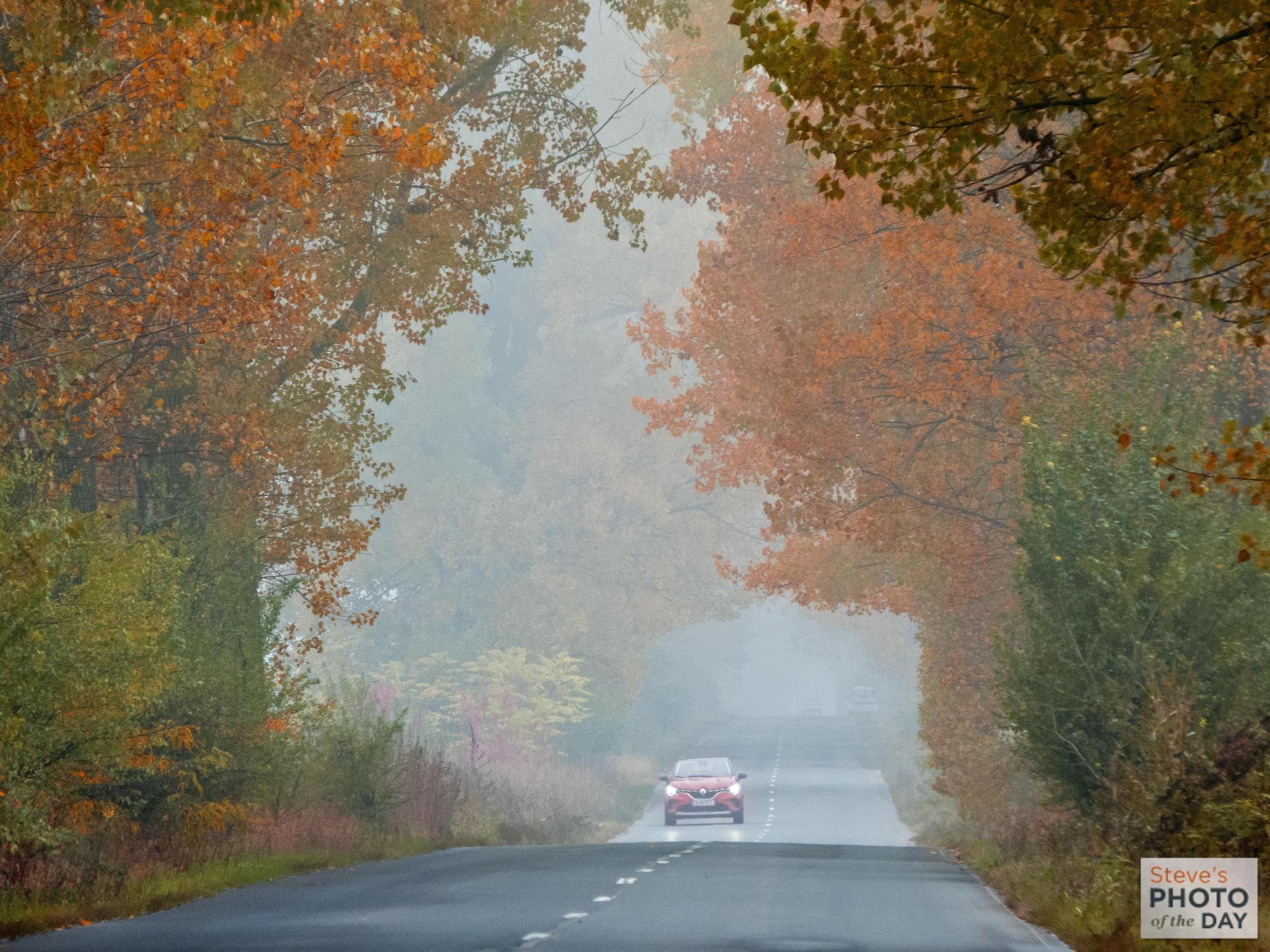 Autumn on the road