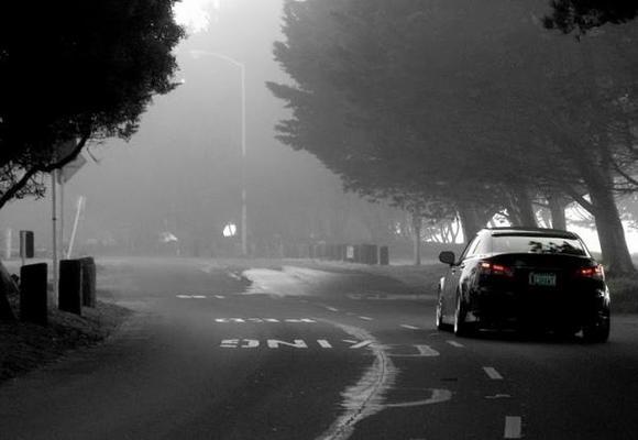 rear fog shot