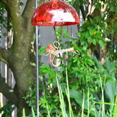 Humming bird feeder in bird display.