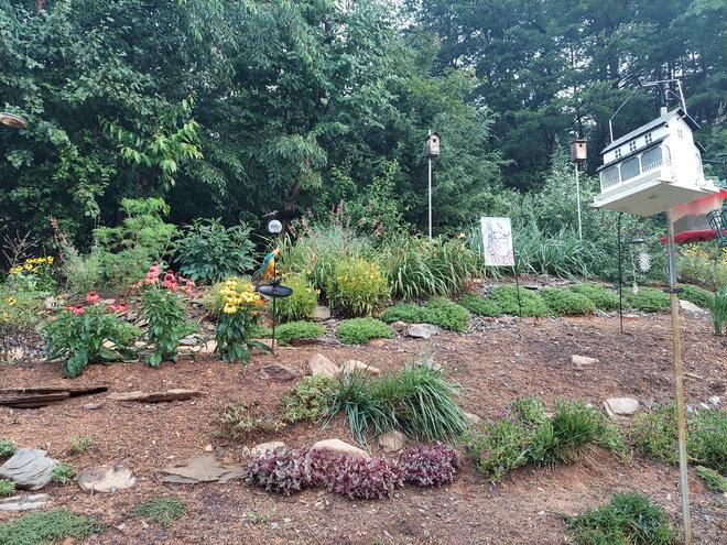 Slope garden July