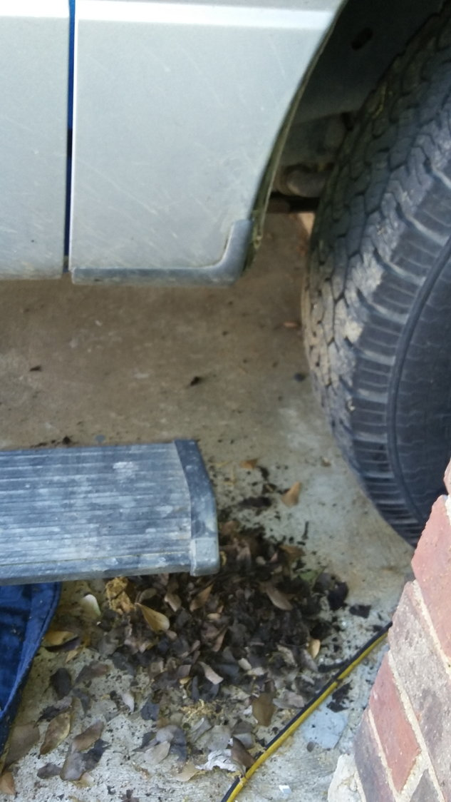 Rust Through- Not covered by warranty - Ford F150 Forum - Community