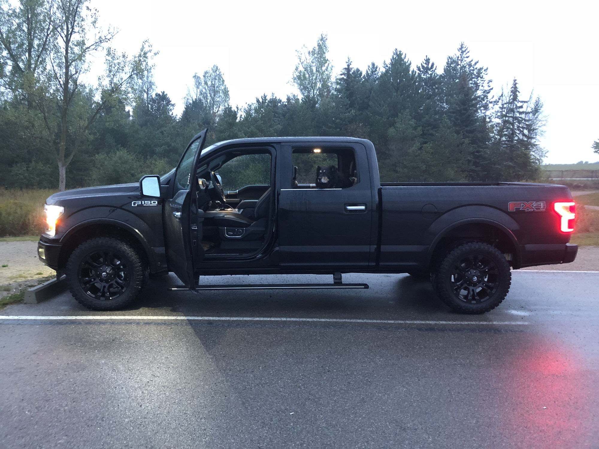 2018 f150 platinum new wheels and tires ford f150 forum community of ford truck fans. Black Bedroom Furniture Sets. Home Design Ideas