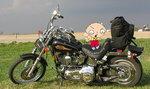 Harley_Dude