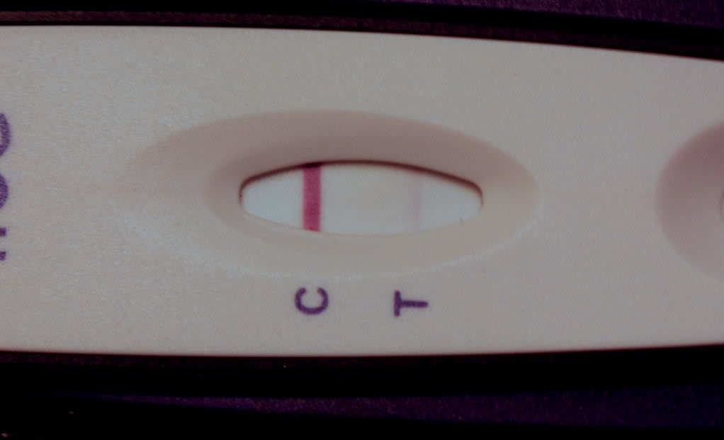 Walmart 88 Cent Pregnancy Test Evap Line - Pregnancy Symptoms