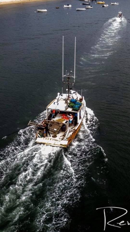 Sportfish hits longline boat off of Chatham - Page 2 - The