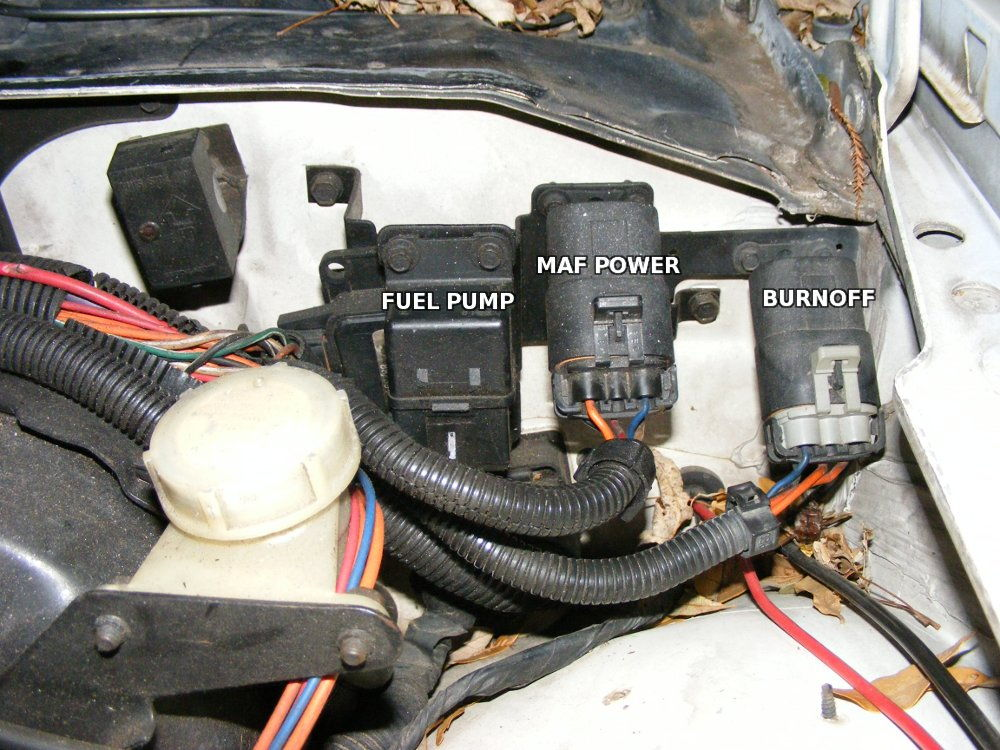 80 iroc_z_maf_relays_21c1a1ff37bdb8044a8fa4af495808e9361c5dc7 88 camaro fuel pump wiring diagram on 88 download wirning diagrams  at metegol.co