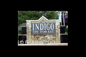 Resident Photo Uploaded On 08 18 2017 Image Of Indigo Forest