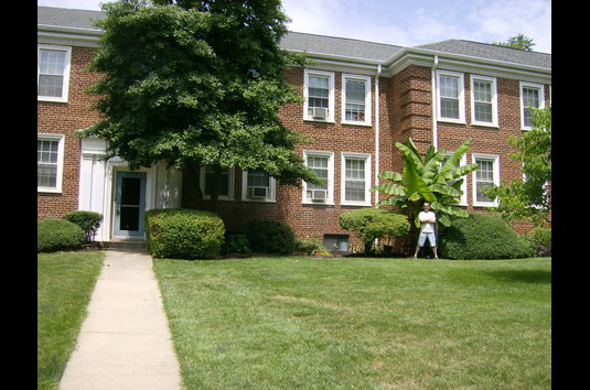 Reviews Prices For Naylor Gardens Apartments Washington Dc