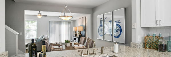 The Coast Townhomes of Naples