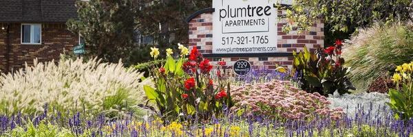 Plumtree Apartments