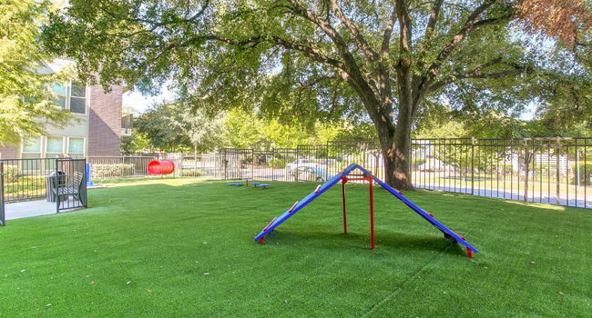 Locale Apartments - 38 Reviews | Dallas, Tx Apartments for ...