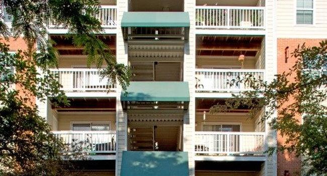Marbella Apartments 43 Reviews Arlington Va Apartments For Rent